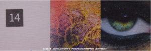 14 Art Print Paper, Macro